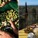 Agriturismo-le-Calle-Toscana-lejligheden-BANDIERA